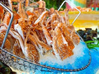 crabs-489851_1280