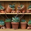 flowerpots-317788_1280
